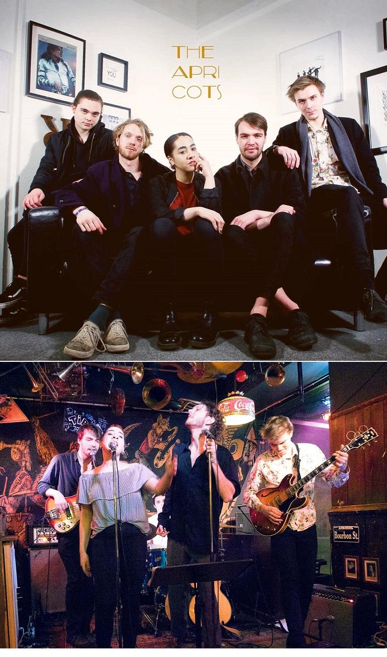 The apricots - band - spelar boka